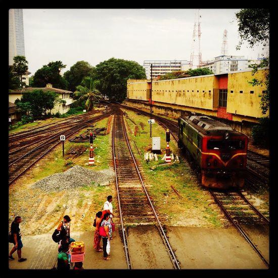 Sri Lank Sri Lanka Sri Lanka Travel Sri Lanka 🇱🇰 SriLanka Public Transportation Rail Transportation Railroad Station Railroad Track Sri Lankan Train - Vehicle