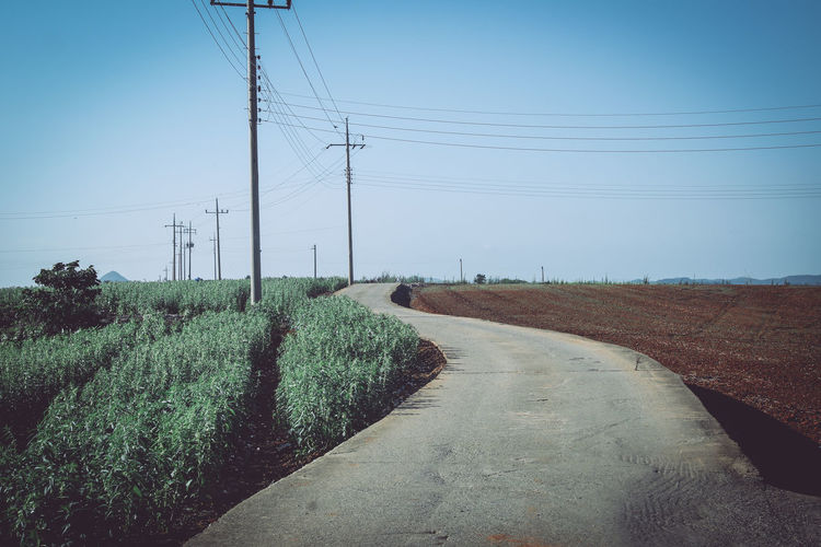 Cable Clear Sky Connection Day Electricity  Electricity Pylon Field Fuel And Power Generation Landscape Nature No People Outdoors Power Line  Power Supply Road Rural Scene Sky Telephone Line