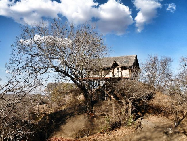 Exotic palafitte lodges in the middle of park Traveling Taking Photos Enjoying The View Travel Africa Adventure