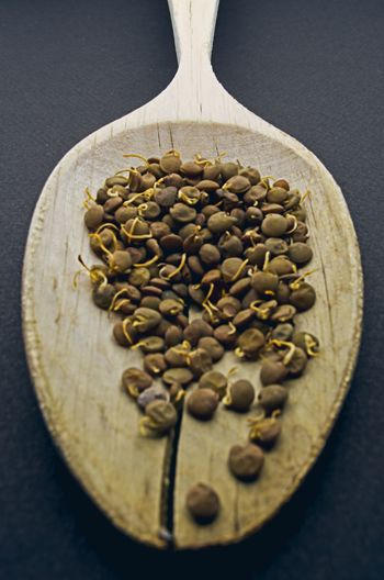 Close-up of coffee beans on black background