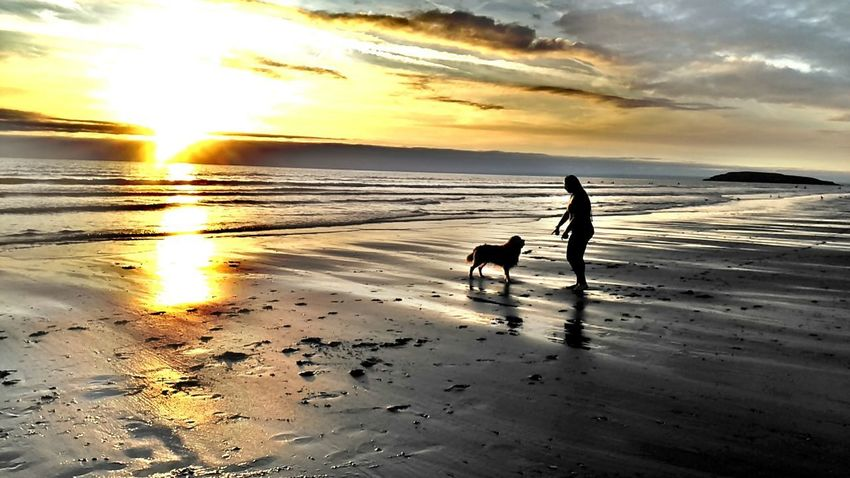 Playing with my dog surf and sunset EyeEm Selects EyeEmNewHere Nature Nature_collection Nature Photography Beachphotography Beach Life Pets Wave Sea Sunset Beach Full Length Water Dog Togetherness Sand Golden Retriever Surf Ankle Deep In Water Tide Retriever Surfer Labrador Retriever Coast Water Sport Seascape Purebred Dog