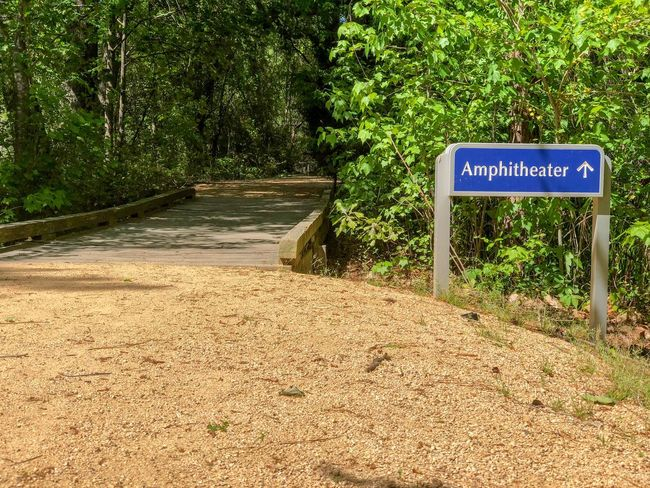 Amphitheater this way Communication Text Sign Western Script Plant Information Information Sign Tree Road Guidance No People Day Transportation Non-western Script Direction Nature Green Color Script Sunlight Road Sign
