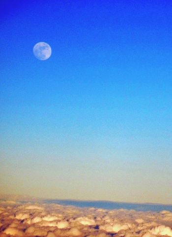 如雪地般,雲上之月。 B7 8822 A321-200