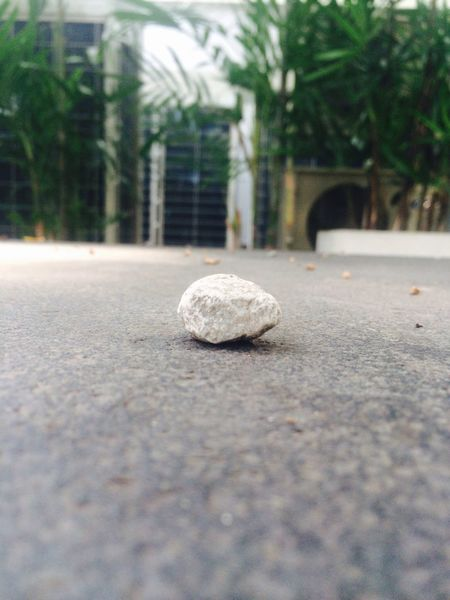 Supernormal Stone Alnoe Natural Beauty