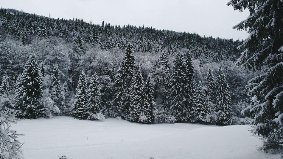 Schnee <3 Mountain Snow ❄ Winterland Beautiful ♥
