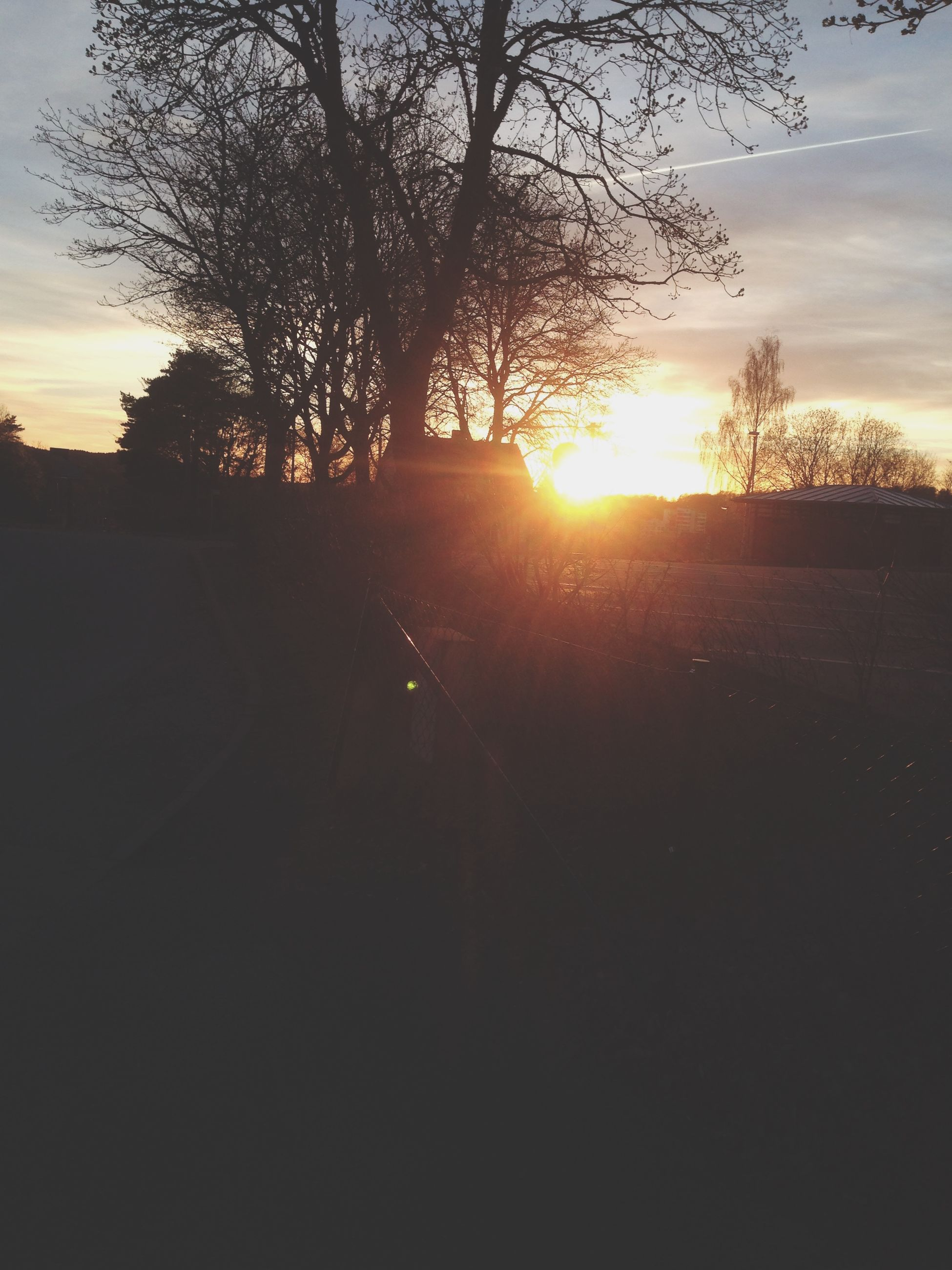 sunset, sun, silhouette, tree, sky, tranquility, tranquil scene, scenics, beauty in nature, sunlight, orange color, sunbeam, nature, cloud - sky, bare tree, landscape, idyllic, lens flare, back lit, branch