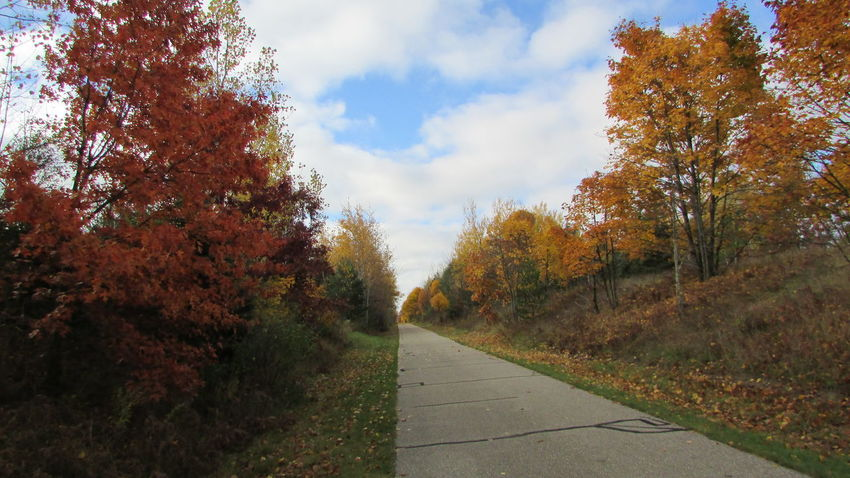 Taking Photos Out For A Walk Down The Trail Leading To Nowhere Fall Collection White Pine Trail Cadillac Sky Pure Michigan