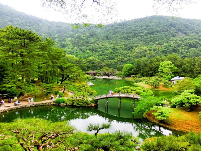 Hi! Hello World Taking Photos Water Nature Beauty In Nature Day Tree Sky Scenics Outdoors Green Color Pond Japan Photography Holiday Destination Bridge Bridge View Japanese Garden High Angle View Enjoying Life The Great Outdoors - 2017 EyeEm Awards Japan 香川 高松 栗林公園