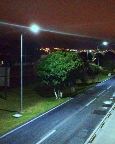 Gigant broccoli - Illuminated Street Light No People Night Shine