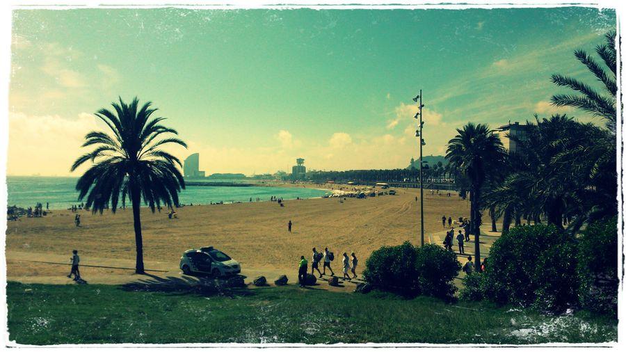Taking Photos Holiday Barceloneta Life Is A Beach