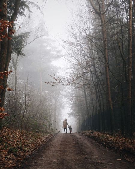 Rear View Of Mother And Daughter On Road Amidst Trees At Forest
