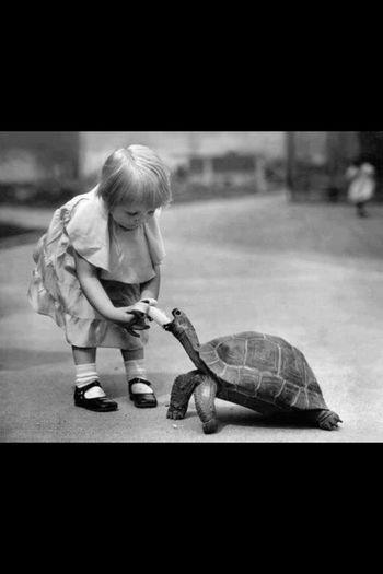قلوب الاطفال مدرسه يتعلم منها الكبار