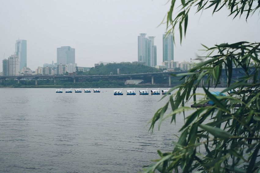 Park Riverside River Docks Boats River Park Park Life Life Style Grass Deep Water