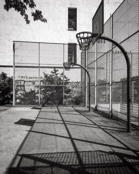 Tree Outdoors Building Exterior Day Built Structure Architecture Basketball Hoop No People City Basketball - Sport City Bnw Black And White Blackandwhite Photography Street Photography Black & White Monochrome Architecture Shadow Pattern Light Light And Shadow Sunny