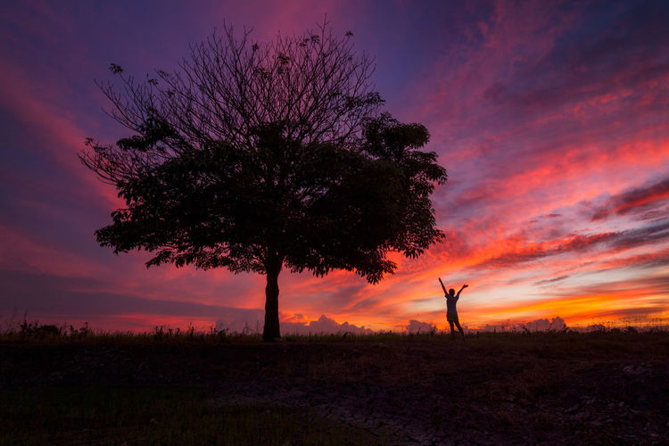 beautiful landscap with tree at sunset Sunset Sky Plant Silhouette Beauty In Nature Cloud - Sky Tree Scenics - Nature Nature Field Land Orange Color Tranquility Tranquil Scene Environment Landscape One Person Non-urban Scene Idyllic Growth Outdoors Human Arm Arms Raised Purple