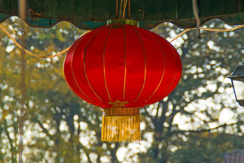 Decorative lantern Chinese Decoration Hanging Red Celebration Lantern Lighting Equipment Focus On Foreground No People Chinese Lantern