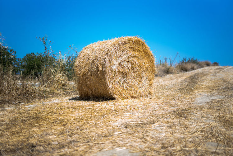 Hay Bale On Agricultural Field Against Clear Blue Sky