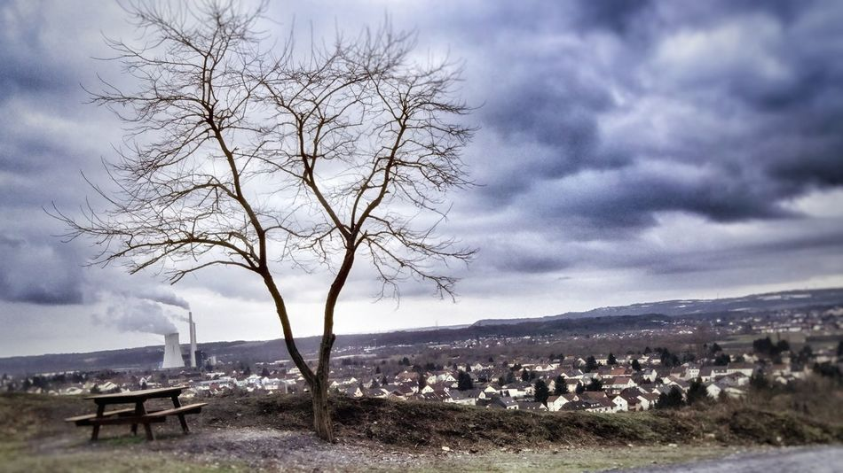 EyeEm Best Shots Ey Cloud - Sky Sky Bare Tree Tree Nature Outdoors Beauty In Nature No People Baumstamm Winter Trees Industry Industrial Industrie