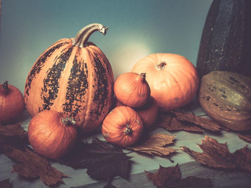 Pumpkin, tinted photo Autumn Close-up Food Freshness Fruit Indoors  No People Orange Color Plant Part Pumpkin Still Life Studio Shot Vegetable Wellbeing
