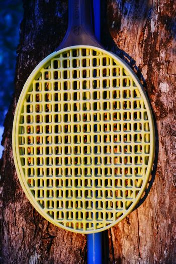 Close-up of tennis racket on tree trunk