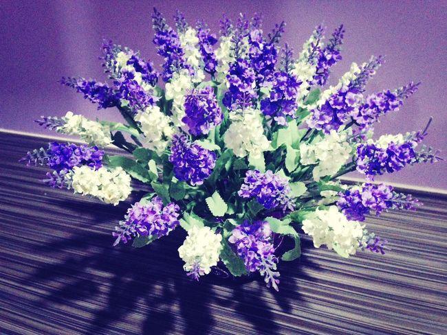 Bunga Cinta ♥