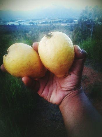 Natural Light Portrait New Caledonia Delicius the big guava! Huuum😆😍