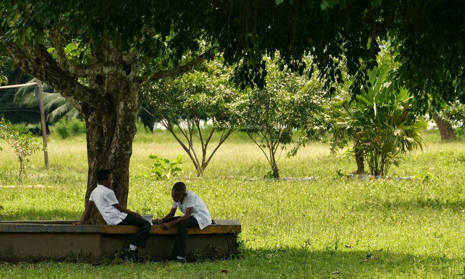 Nuquí Choco Colombia South America School Boys Homework Green Sitting Tree Tree Trunk Park Travel Traveling People Watching Boys School