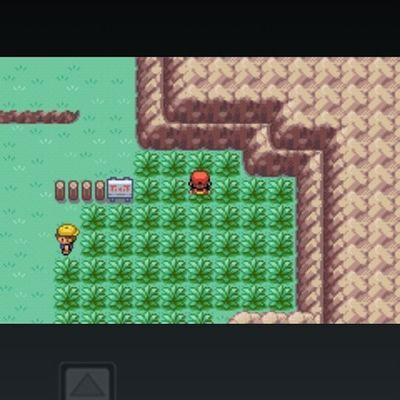 Cheeky but not pokemon on my phone Pokemonfirered Pokémon Tallgrass Charmander