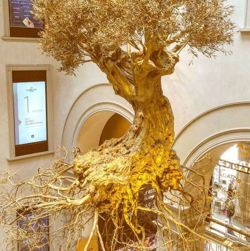 Golden treee..........