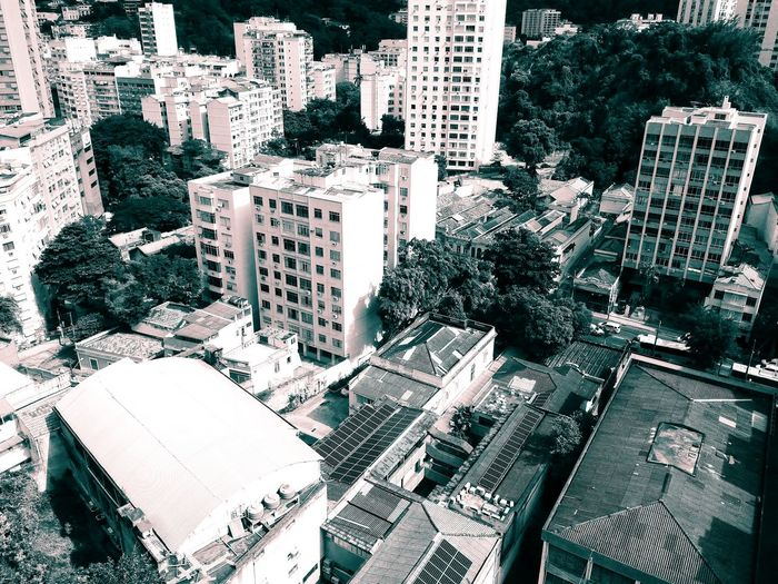 Day Outdoors No People Full Frame Backgrounds Urban Monochrome Aerial View Green White Buildings Houses Tropical View From Above Capital Cities  City Metropolis Light Streets Trees Roads Residential  Life Living Modern Neighborhood Map