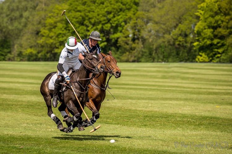 Riding Horse Horseback Riding Motion Transportation Helmet Competition On The Move Speed Working Animal Men Full Length Sports Race Sports Track Lifestyles Mode Of Transport Sport Sports Helmet Headwear Leisure Activity Polo Polo Horses  Horses Horse Photography  Horse Riding