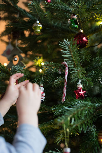 little girl decorates the christmas tree Tree Xmas Bauble Celebration Christmas Christmas Decoration Christmas Ornament Christmas Tree Close-up Decoration Hanging Holiday - Event Human Hand Indoors  One Person People Tradition Tree