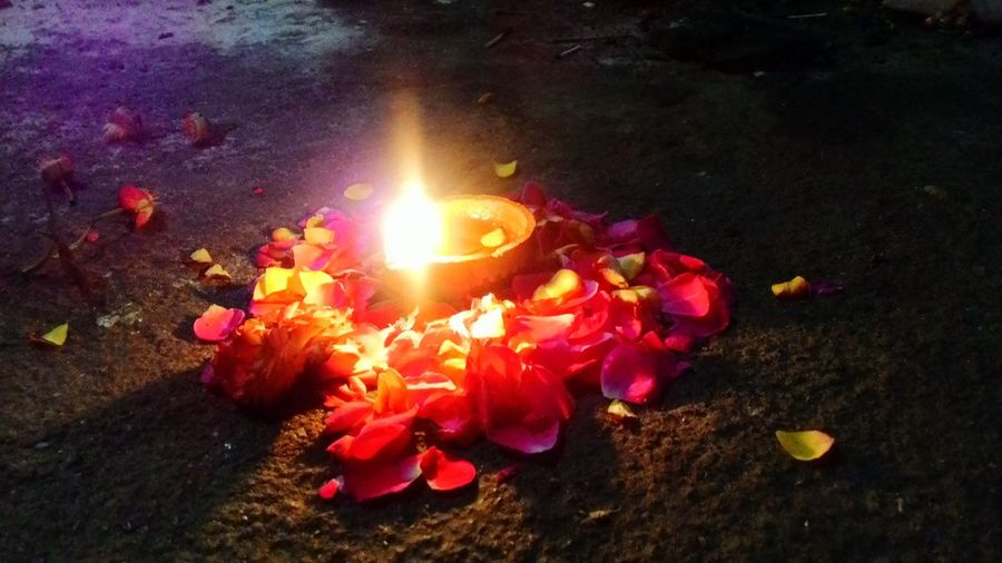 My Year My View Lamp Light Flowers Peace Indian_tradition Beatiful Evening Colors Of Nature Mother Nature Colourful. I was having a peaceful moment in a temple and then I saw this beautiful creativity which made the spiritual evening even better 😊 at Bhevaneshwari Temple Bangalore India