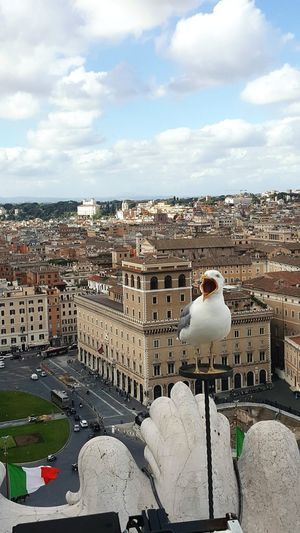 Florence Italy Travel Destinations Cityscape Outdoors Architecture Road Birds🐦⛅ People Cloud - Sky