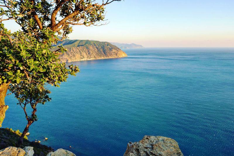 Sestri Levante Liguria Punta Manara Liguria,Italy Italy Sea Landscape Landscape_Collection Lanscapes Tree Water Sea Mountain Beach Blue Idyllic Rock - Object Clear Sky Sunset Seascape Coast Bay Of Water