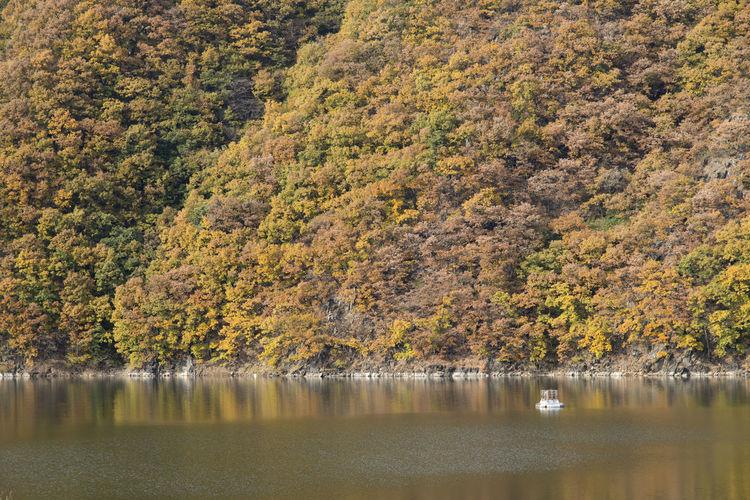 autumn landscape at Janggye Tourism Place in Okcheon, Chungbuk, South Korea Autumn Janggye Okcheon Riverside Autumn Beauty In Nature Day Lake Nature No People Outdoors Reflection River Scenics Tranquil Scene Tranquility Tree Water Waterfront