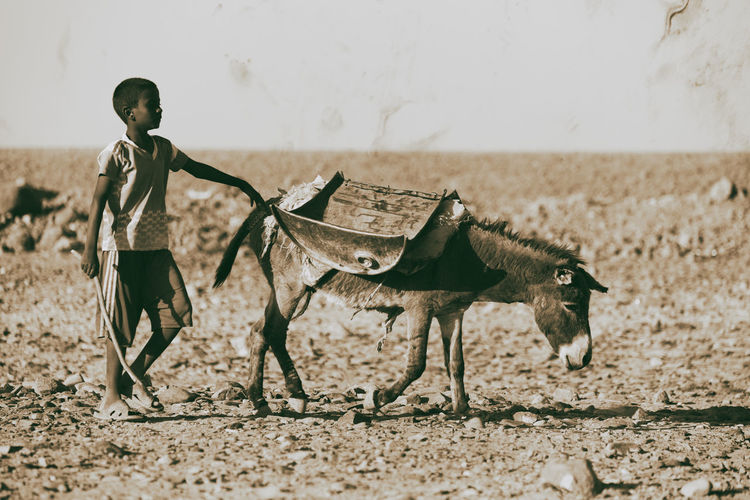 Side view of boy standing on land