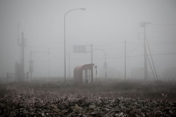 Fog Nature No People Day Electricity Pylon Built Structure Electricity  Land Outdoors Sky Architecture Field Technology Beauty In Nature Plant Part Power Line  Building Exterior Cold Temperature Cable Power Supply EyeEmNewHere