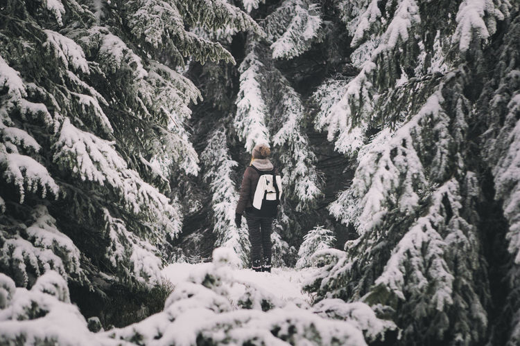 Rear View Of Woman Amongst Snow Covered Trees
