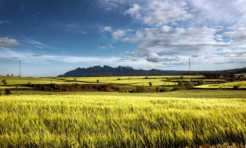 Landscape Landscape_Collection Catalonia Is Not Spain EyeEm Nature Lover