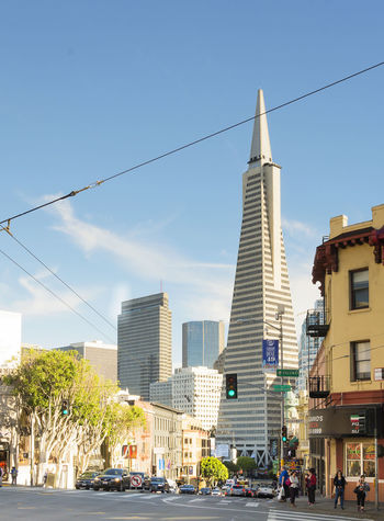 San Francisco, CA, USA, october 23, 2016: Transamerica building with its pyramid shape in San Francisco Architecture Building Exterior Built Structure City City Life Cityscape Clear Sky Day Downtown District Modern No People Outdoors Sky Skyscraper Sunlight Transamerica Pyramid Travel Destinations Tree Urban Skyline Water