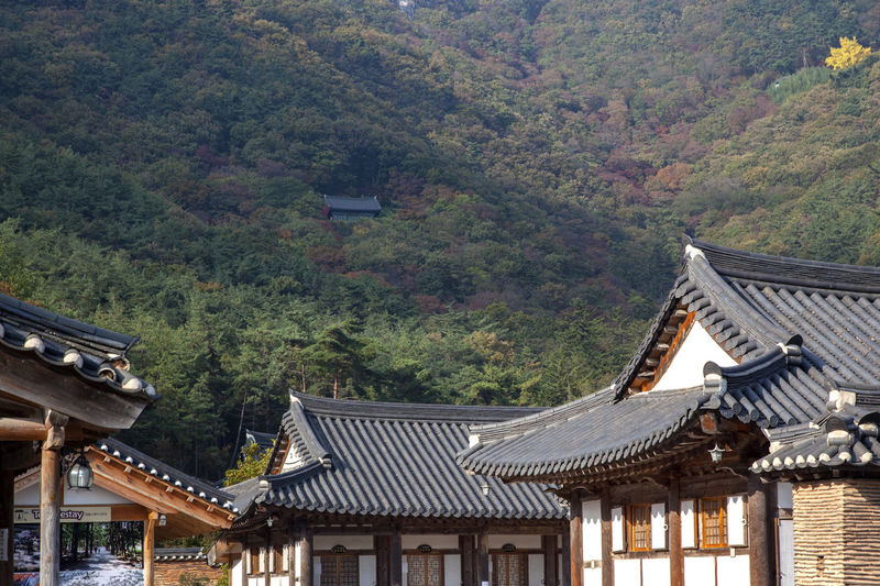 Buddhism temple  against mountain