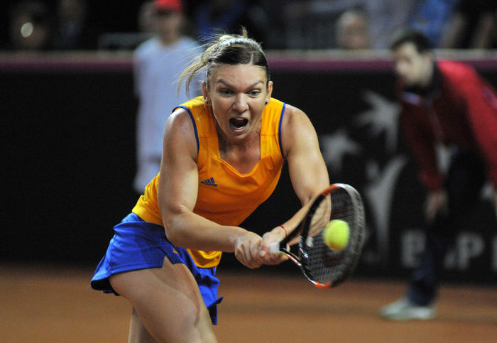 CLUJ-NAPOCA, ROMANIA - APRIL 17, 2016: WTA 6 ranked woman tennis player Simona Halep plays against Angelique Kerber during a Fed Cup Play-Offs Tennis match, Romania vs Germany Championship Concentration Emotion Fed Cup Female Game Match People Racket Romanian  Simona Halep Slam Sport Sports Sports Clothing Sports Photography Tennis Tennis Player Tennis 🎾 Tennisball Tenniscourt Winner Woman WTA Yellow