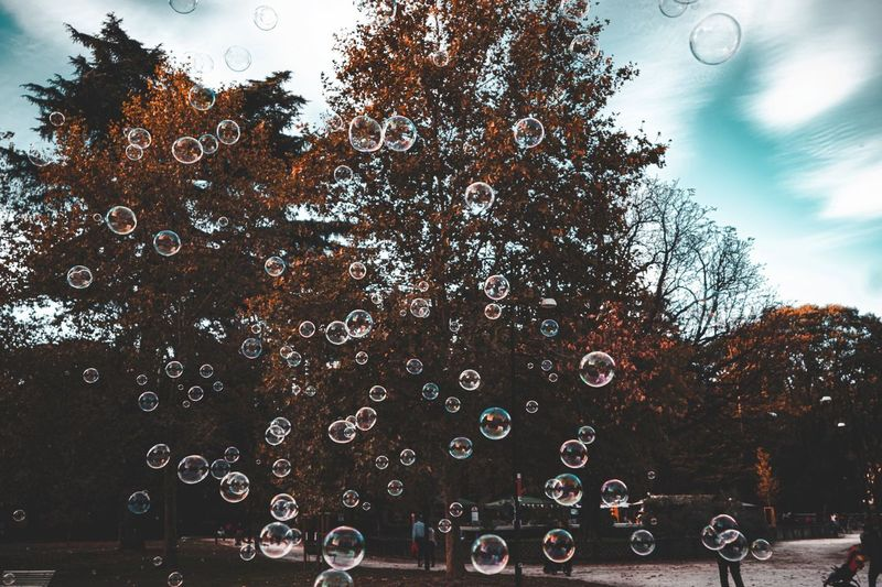 Tree Plant Sky Nature Mode Of Transportation Transportation Land Vehicle Cloud - Sky Building Exterior Bubble Car Group Of People Real People Built Structure Outdoors Water Day Architecture Motion