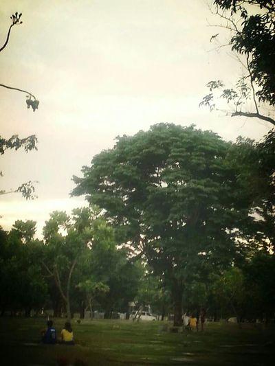 EyeEm Nature Lover Cemeterybeauty
