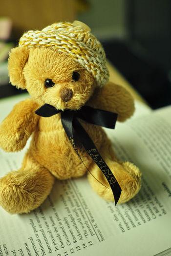 Innocentsmoothie Bear Knit