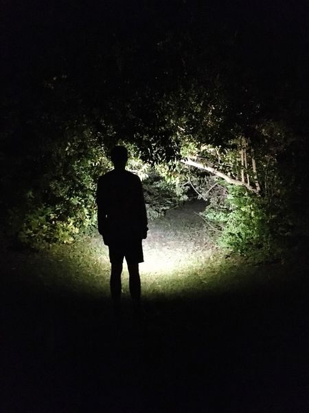 Alien Encounter In The Woods By Night Mystery Unknown Journey Path In The Woods Contrast Light And Shadow Colour Your Horizn Colour Your Horizn This Is Masculinity