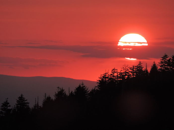 Smoky Mountain Sunset Unfiltered Zoom Ridgeline Evergreen Tree Backlit Silhouettes. Taken from Clingmans Dome Overlook , Great Smoky Mountains National Park , Tennessee