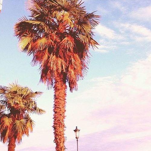 Σαλονίκα bitchezz!!!👅✌ Salonika Lovelovelove Myviewrightnow Epitelousedwww Happycolourfulafternoon Befree Andthenyouwillbehappy Friends Antonis Anna Anastasia Alexandros Mybaes ❤