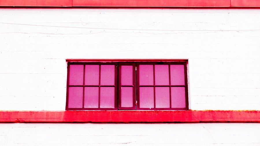 Close-up of pink closed red wall
